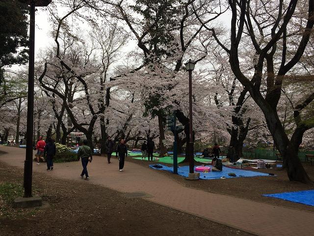井之頭公園 宴会