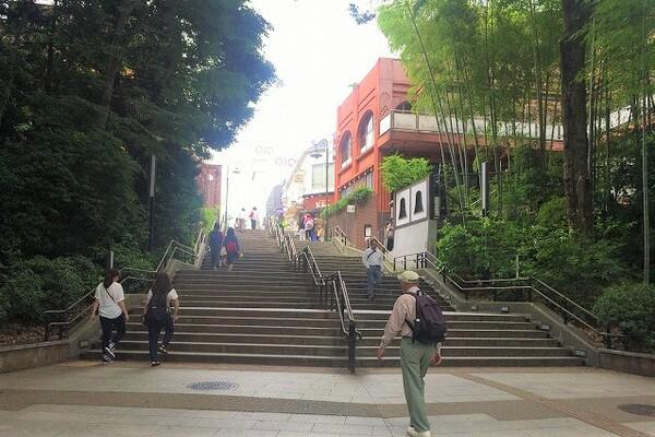 公園へはこの階段を下りていきます。