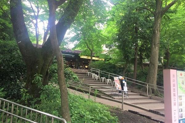 井の頭公園内にあるレストラン「ぺパカフェ・フォレスト」