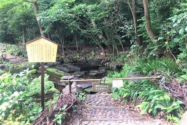 井の頭公園内の「お茶の水」