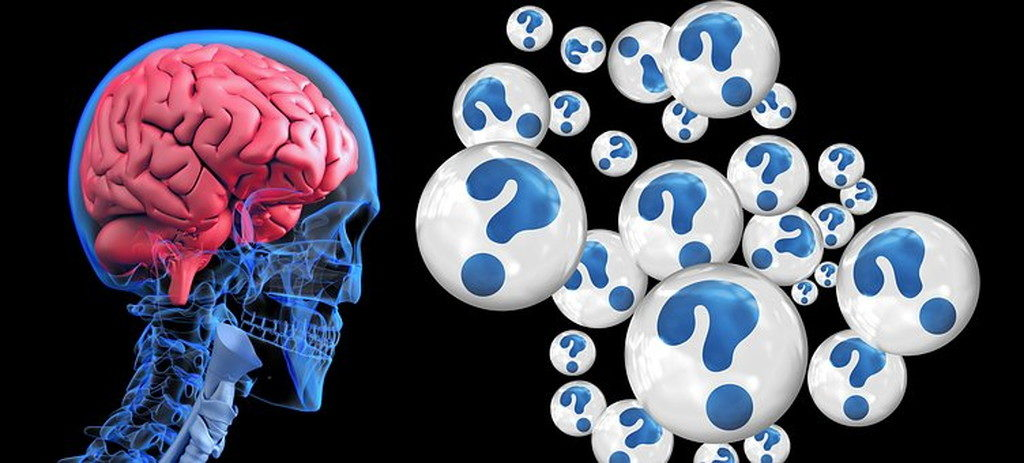 「原始的な脳」と「進化した脳」のギャップによるもの