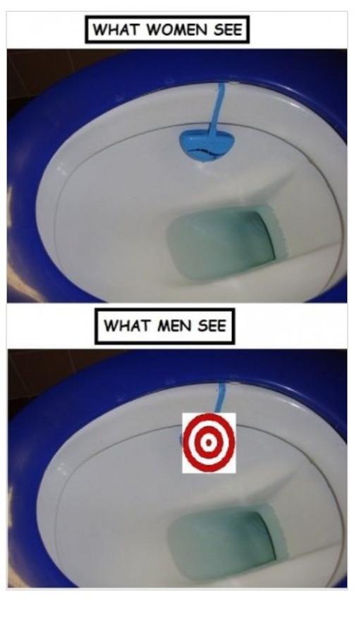 男女のトイレの見え方の違い