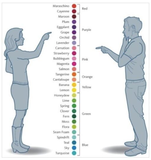 男女の色に対する認識の違い